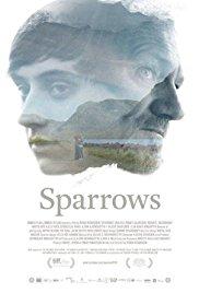 Sparrows 2015